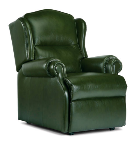 Claremont Small Leather Fixed Chair