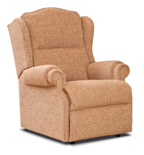 Claremont Standard Fabric Fixed Chair