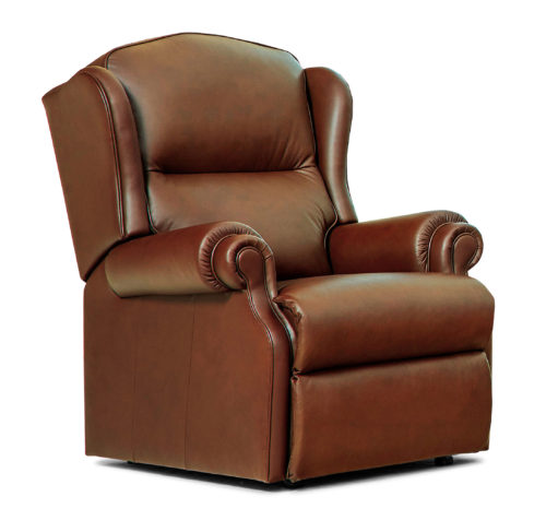 Claremont Standard Leather Fixed Chair