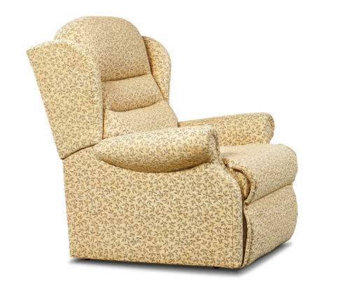 Ashford Standard Fabric Fixed Chair