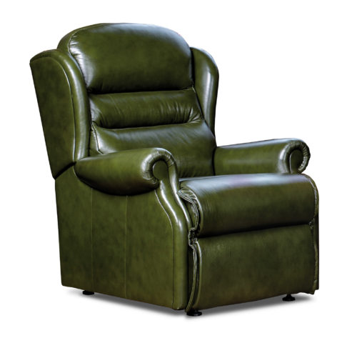 Ashford Standard Leather Fixed Chair