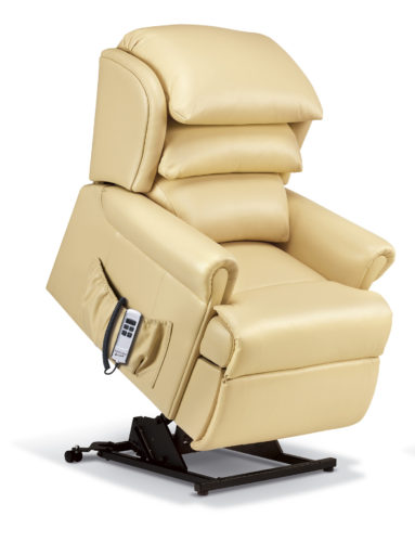 Windsor Petite Leather 'Lift & Rise' Recliner
