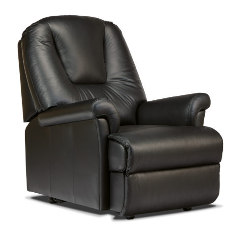 Milburn Petite Leather Fixed Chair