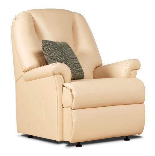 Milburn Standard Leather Fixed Chair