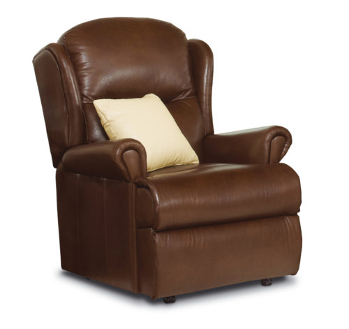 Malvern Standard Leather Fixed Chair