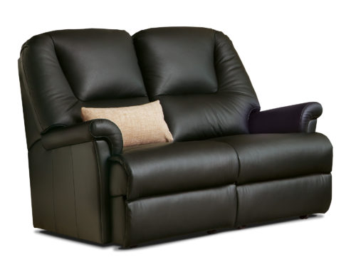 Milburn Petite Leather Fixed 2-Seater Settee