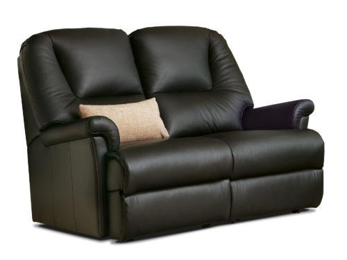 Milburn Petite Leather Fixed 2-Seater Settee