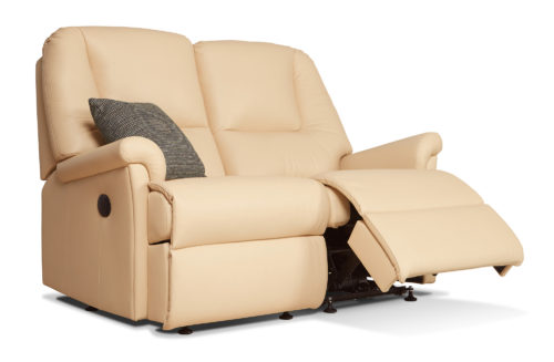 Milburn Standard Leather Reclining 2-Seater Settee