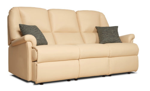 Milburn Standard Leather Fixed 3-Seater Settee