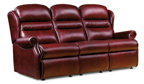 Ashford Standard Leather Fixed 3-Seater Settee